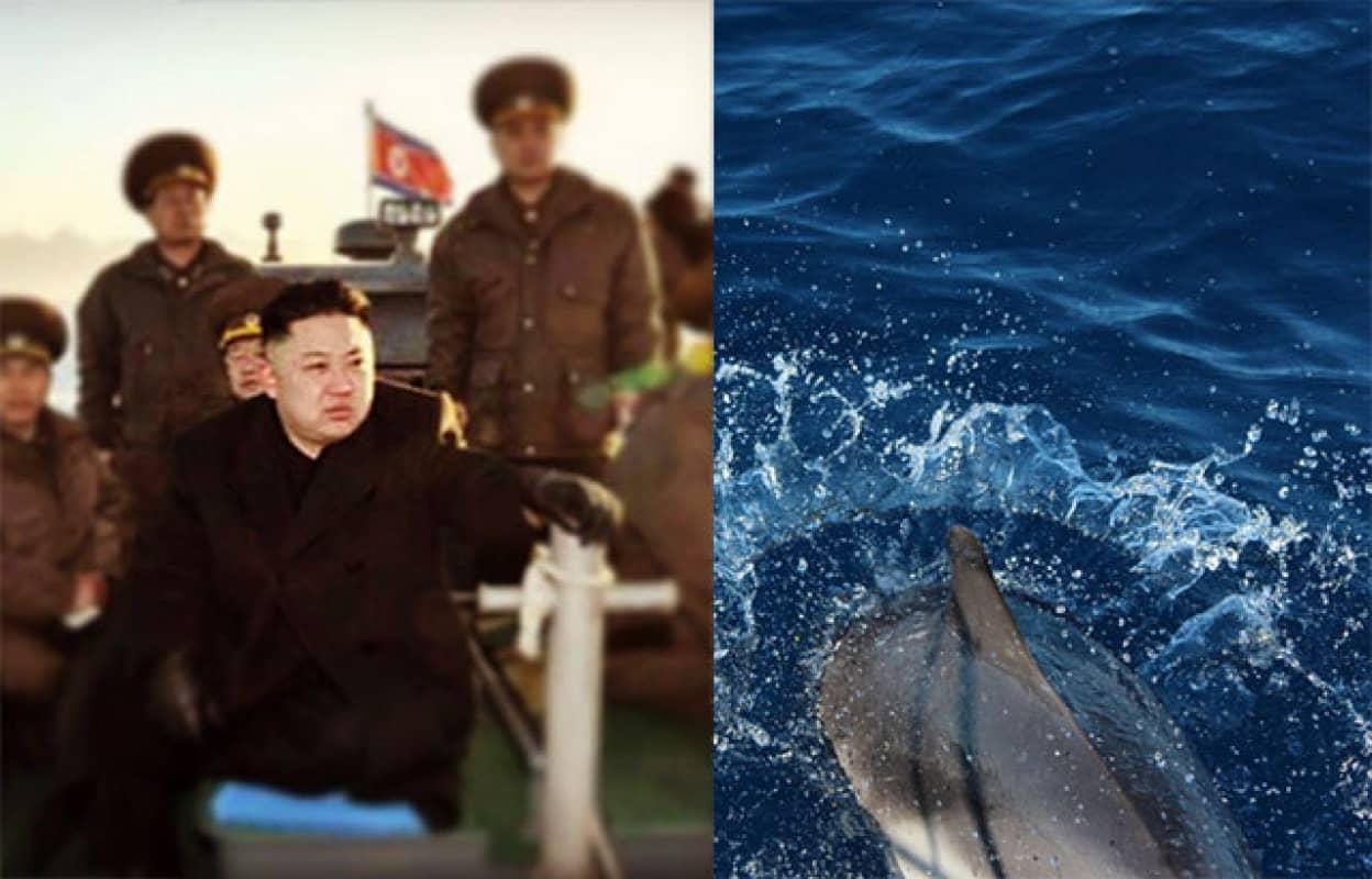 北朝鮮が軍用イルカを育成している可能性