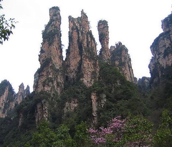 zhangjiajie-national-forest-1_e
