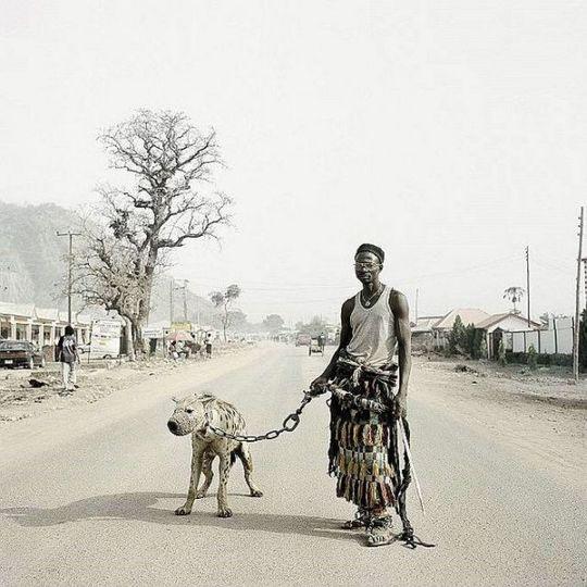 african_wild_pets_11