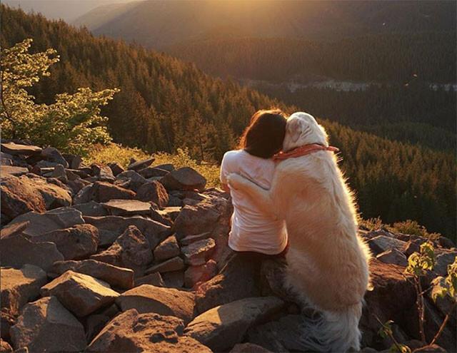 飼い主を抱きしめる犬