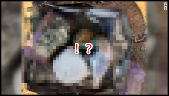 隠し財宝が現実のものに!?裏庭で発見した金庫にお宝がザクザク入っていた件に関するツイッターの反応