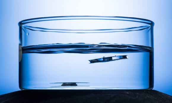 沈まない船ができるかも?蜘蛛とアリからヒントを得た水に浮く金属が開発される(米研究)