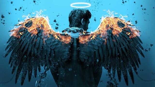 wings-5230461_640