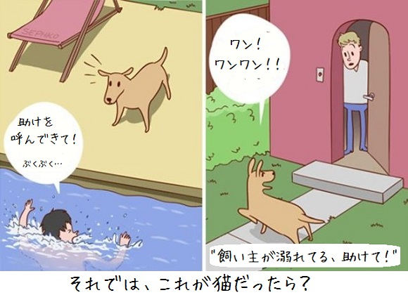 犬と猫って火星と金星くらい違うけど、だがそれがいい。犬と猫の違いを描いた海外の10のマンガ