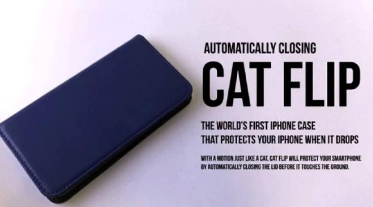 cat2_e