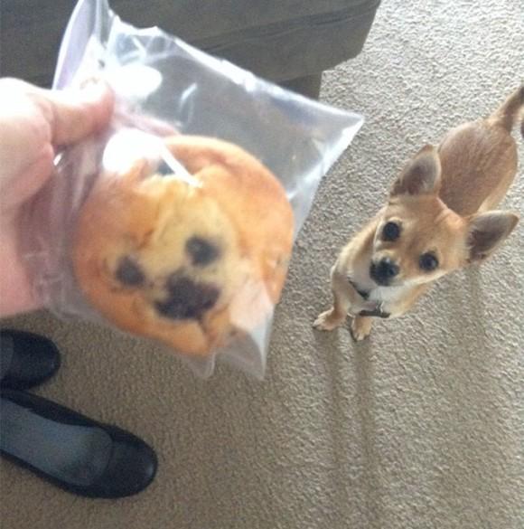 muffin_e