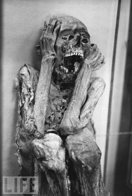 amazing_mummies_21