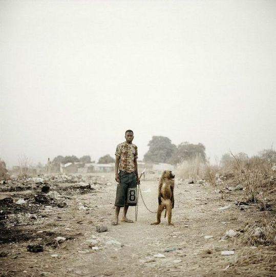 african_wild_pets_09