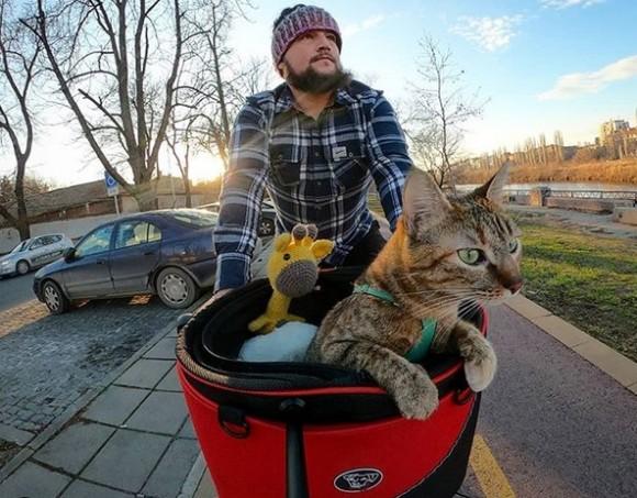 路上で偶然出会った野良猫と共に、自転車で世界を旅するサイクリスト
