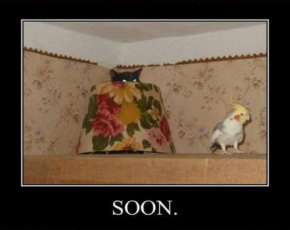 soon_06