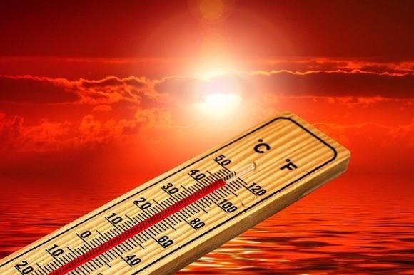 thermometer-4767444_640_e