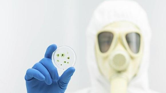 ウイルス流出。フランスで2349本のSARSコロナウィルスのサンプル試験管を大量紛失