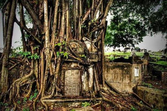 graveyard_scenes_640_20