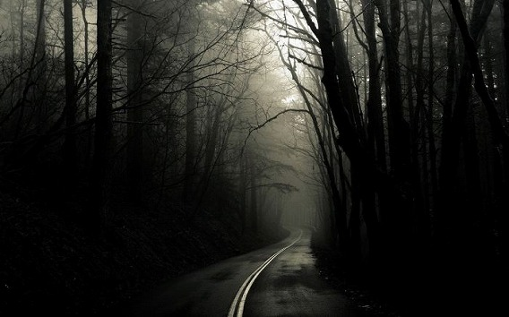 fog_26