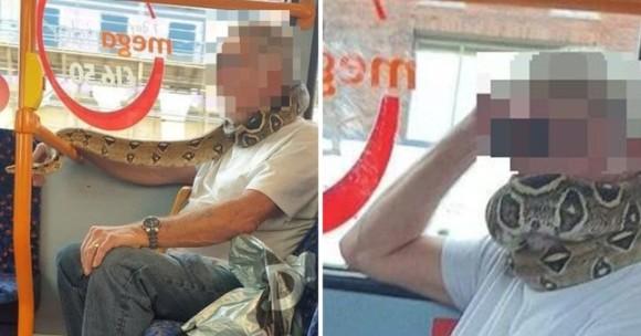 ヘビをマスク代わりに使用したバスの乗客