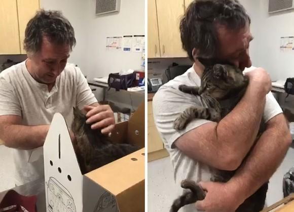 行方不明になった猫と再会を果たした飼い主たちの物語
