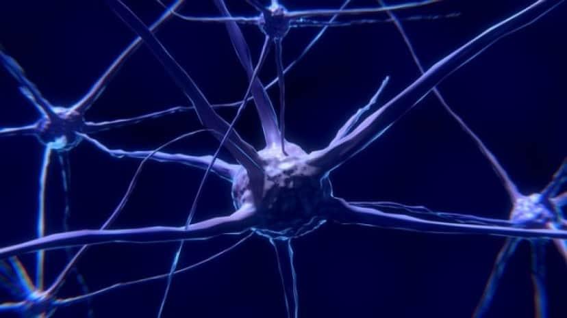 nerve-cell-2213009_640_e