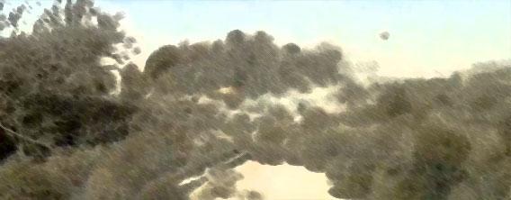 植物の逆襲、タンブルウィード(回転草)軍団がドライバーを襲う!(米テキサス州)