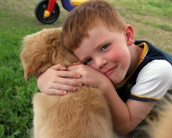 puppy-2197314_640_e