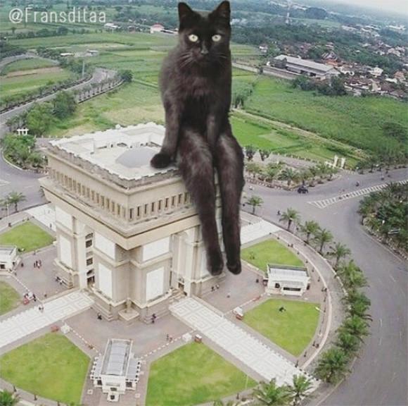 猫を巨大化させて都市景観に溶け込ませてみた。ちょっとアリだと思った。