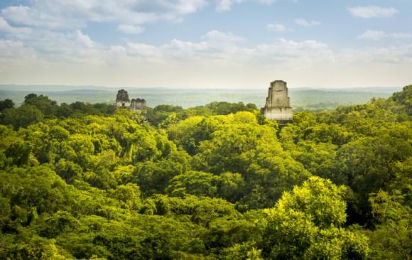 古代マヤには農地の巨大なネットワークが構築されていた。最新のライダー走査技術で明らかに