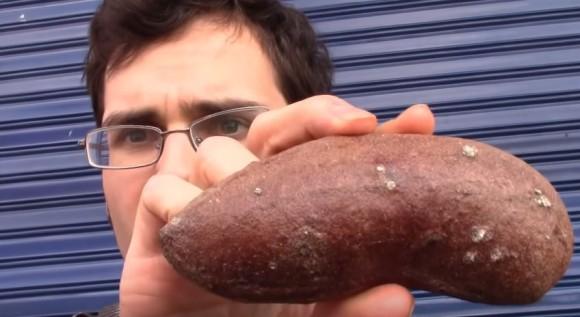 「悪臭を放つつま先」の異名を持つ、臭い足と同じニオイがする果物「クールバリル」