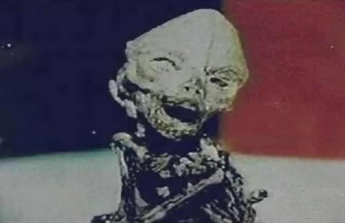 alien-24_e
