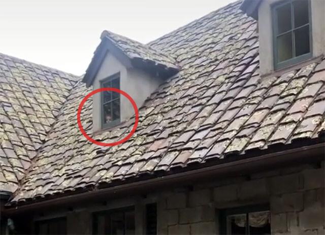 廃屋の窓からこちらを覗く人の顔が