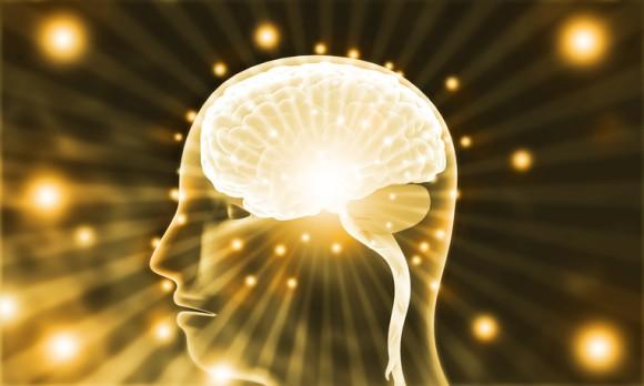 「死ぬなんてありえない」脳にはリアルな死の実感から逃避するメカニズムがある(イスラエル研究)