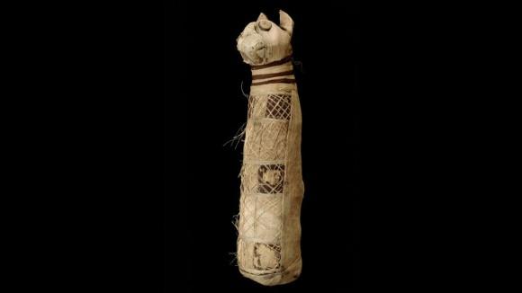 古代エジプトの猫のミイラの中身をCTスキャン、3匹の猫の体の部位が入っていたことが判明(フランス研究)