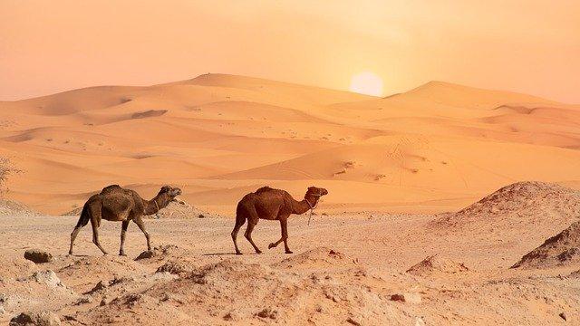 desert-4990324_640