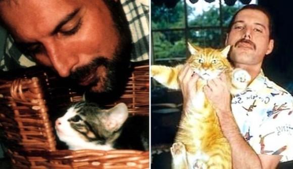 人生最後の写真も猫と共にあった。伝説のロックバンド、クイーンのボーカリスト「フレディマーキュリー」と彼の愛した猫たち