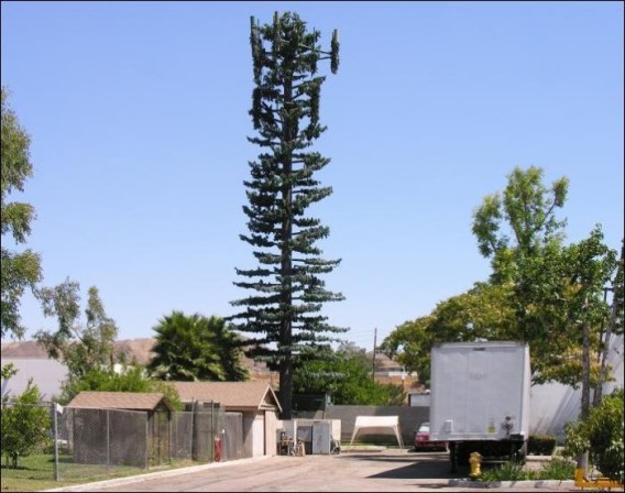camouflaged_cell_phone_tower_18_e