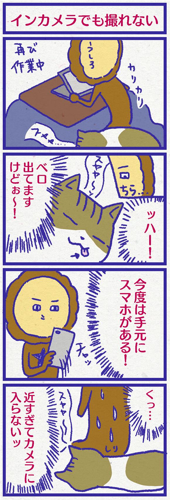 ib3103