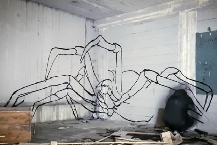 spider2_e