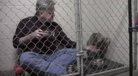 獣医さんの動物や飼い主に対する愛情とユーモアがわかる画像と動画