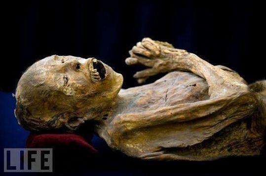 amazing_mummies_11