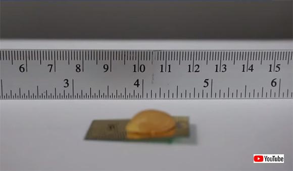 踏まれても死なない。ゴキブリのような生命力と速度を兼ね備えた小型ロボットが開発される(米研究)