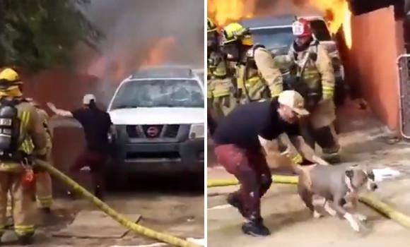 犬を救うため。火事で燃え盛る家の中に飛び込み助け出した飼い主男性(アメリカ)