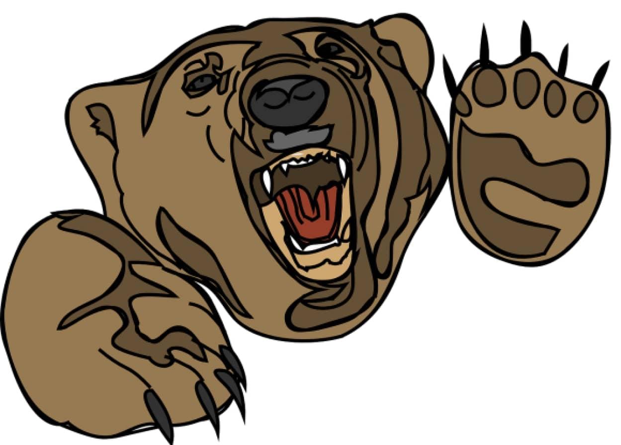bear-48196_1280_e