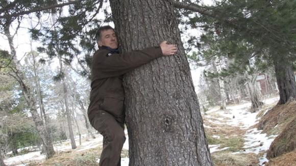 木を抱きしめる