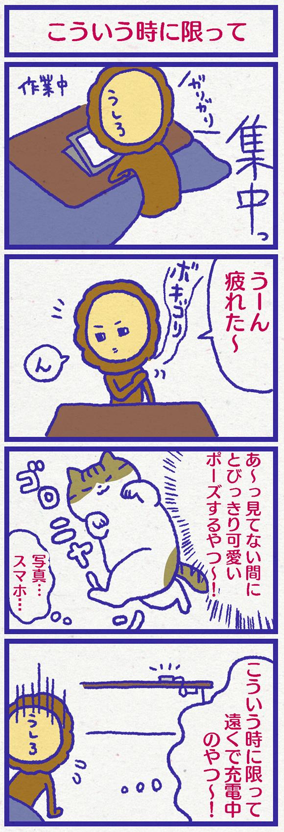 ib3101