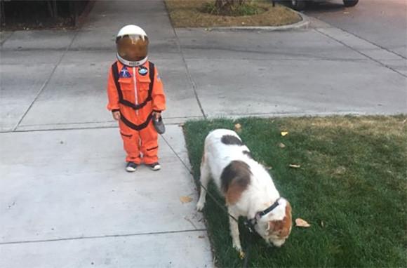 宇宙服を着た少年が犬を散歩させている姿があまりにもシュールだったのでコラ職人がんばる
