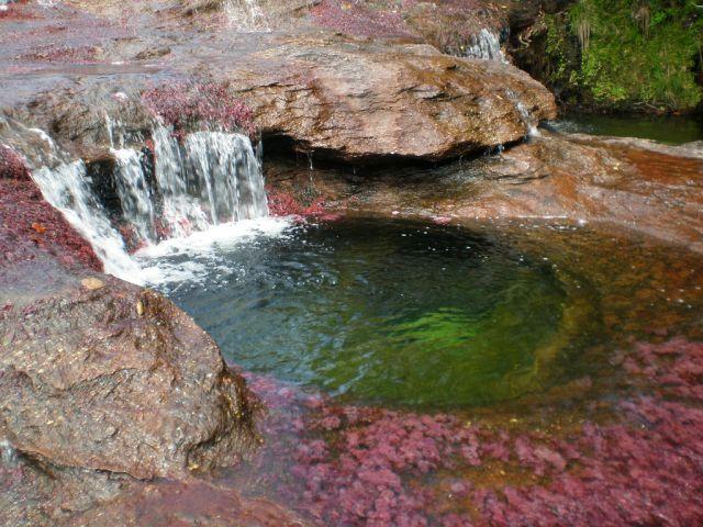 نهر الألوان الخمسة ( أجمل أنهار العالم ) b454457f.jpg
