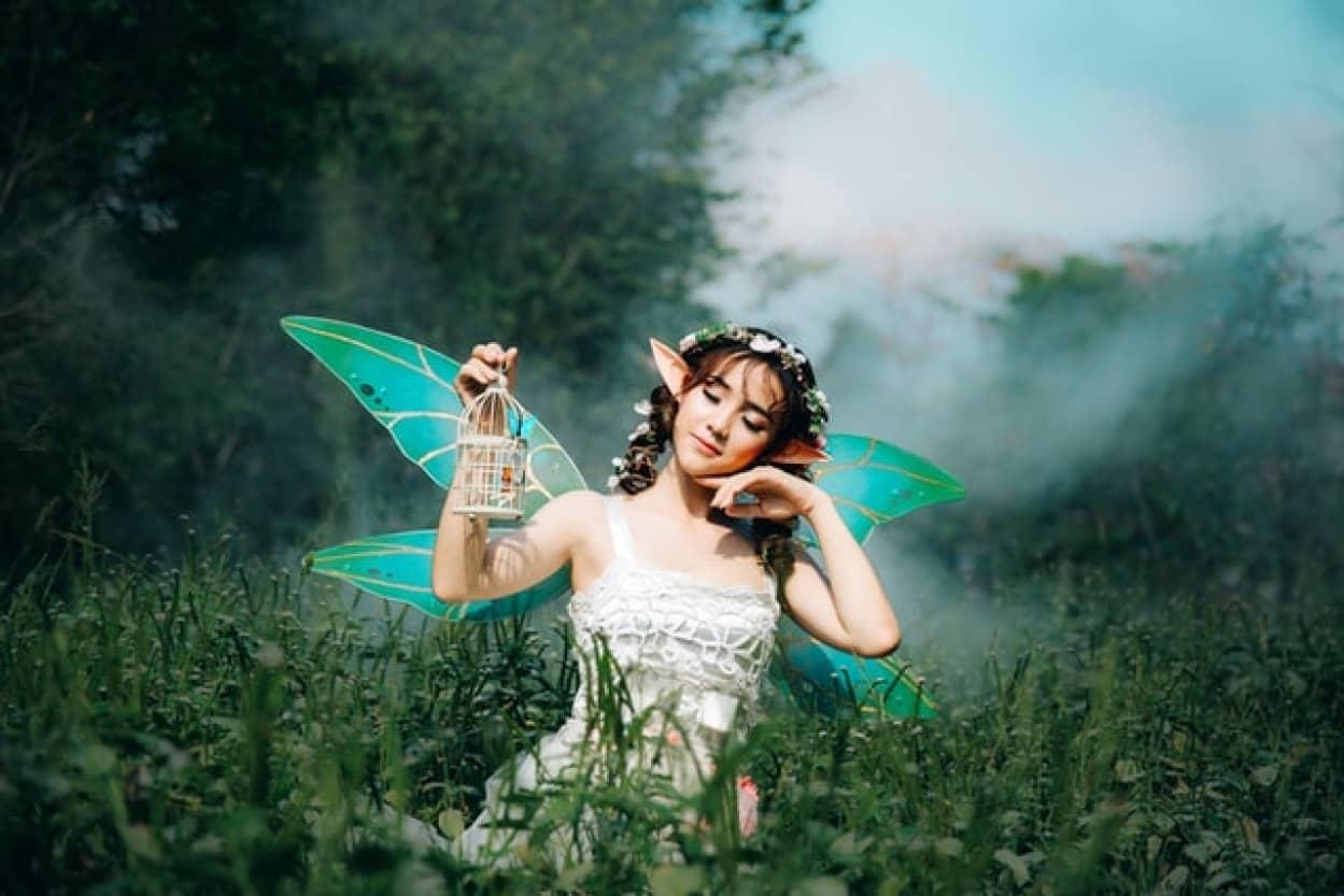 妖精と共にあるアイルランドの人々の暮らしno title