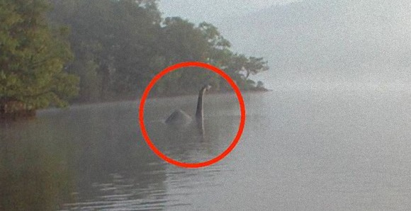 ネッシータイプか!?英国、ウィンダミア湖に現れた謎のモンスターボウネッシー(Bownessie)