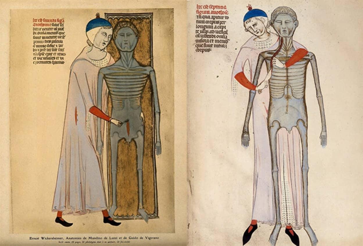 中世のイタリア人医師が描いた解剖図