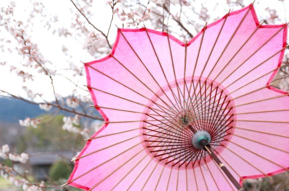 桜の花びらがモチーフ。開くとぱっと花が咲く「桜和傘」が4月1日より販売開始