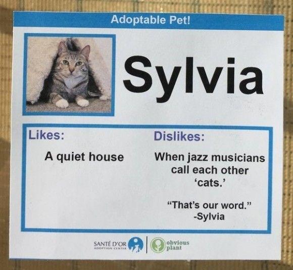 Sylvia_e