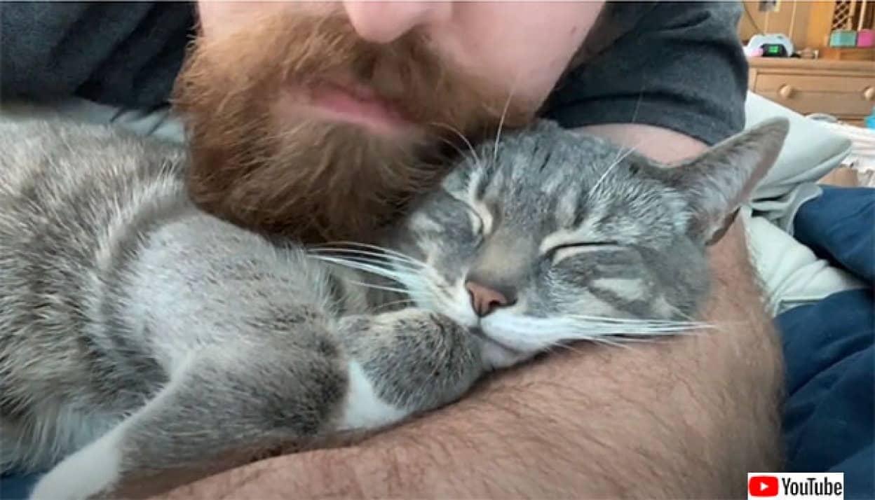 猫とヒゲメンは相思相愛、その理由はヒゲにあった?